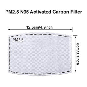 PM2.5 N95 Activated Carbon Filter